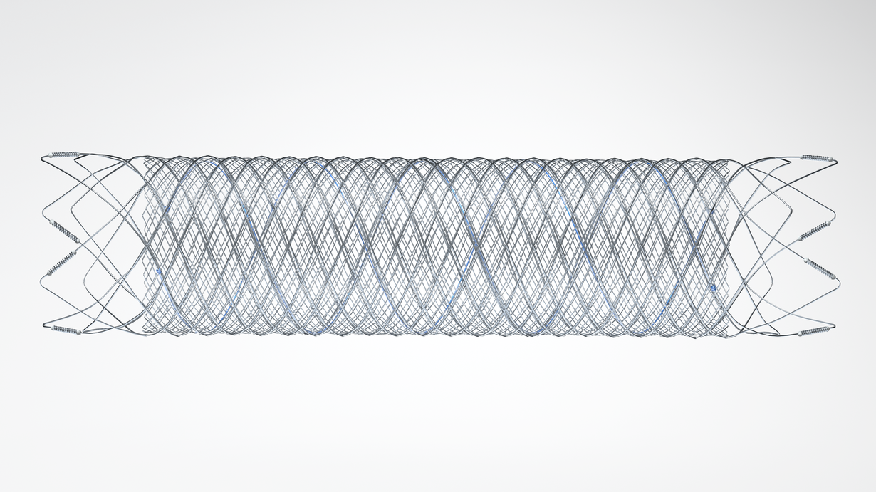 FRED  *The blue wire denotes the radiopaque stent body material that integrates both stent layers