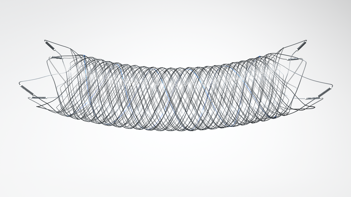 FRED Jr  *The blue wire denotes the radiopaque stent body material that integrates both stent layers
